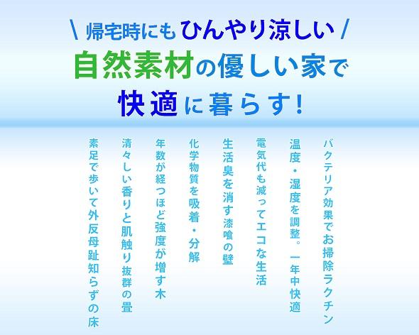 Resize_Webサイト用_夏広告03.jpg