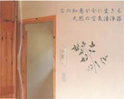 幻の漆喰02